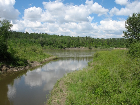 The confluence of Whitemud Creek and the North Saskatchewan River