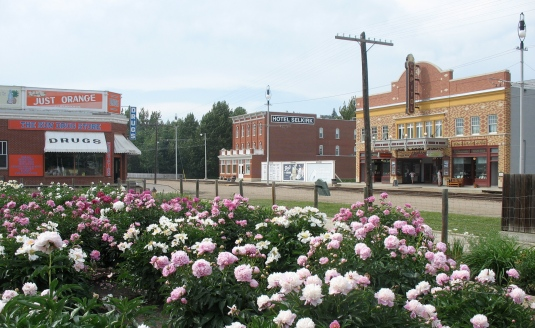 1920 Street with the peony garden in the foreground