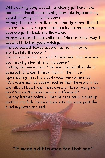 howtohelp_starfish_story