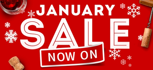 crm_january_sale_2016_mobile_main