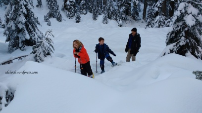 snowshoeing on Mount Seymour