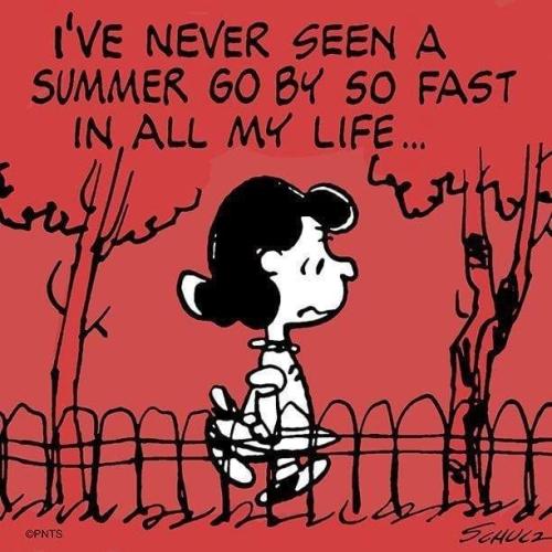 Short summer