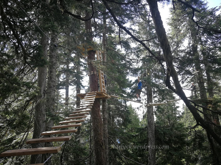 Richard ropes course